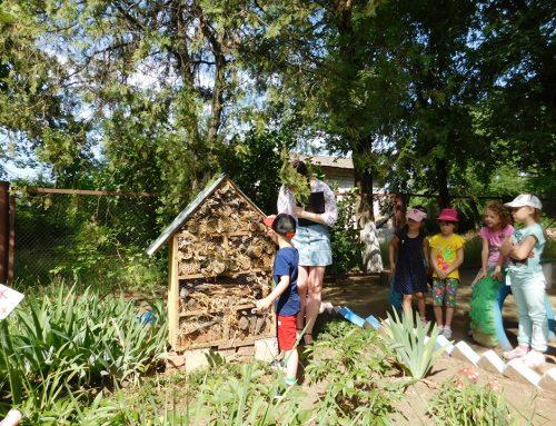 Будиночок для комах у дитсадку навчає добра!